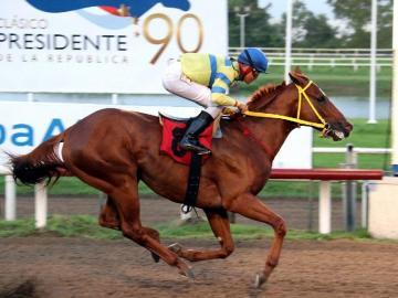 Equinos terminan con la cuarentena exigida