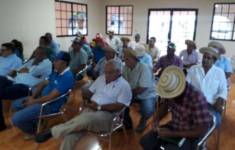 Ganaderos de Los Santos piden moratoria y aumentar exportación