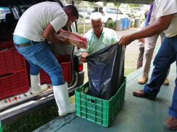 Decomisan 10 cajas de carne de cerdo sin registros sanitarios