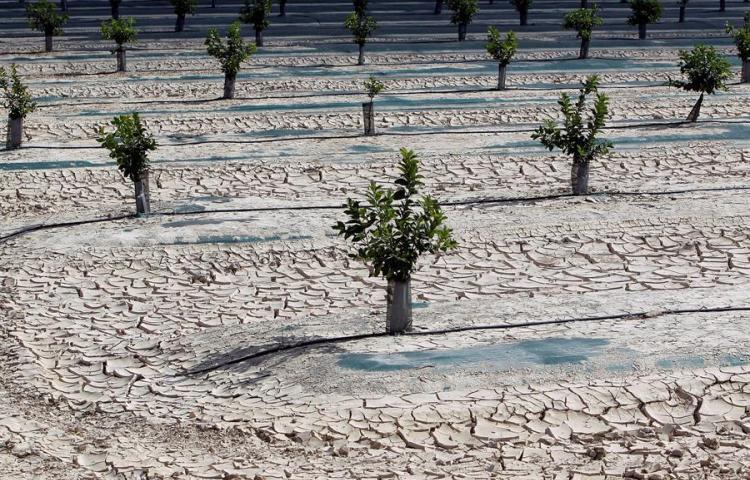 Prevén que la escasez de agua se convertirá en preocupación para el Caribe