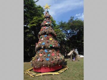 Comunidades rurales se unen para hacer su árbol navideño