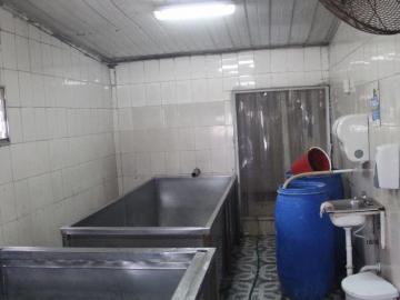 Cierran temporalmente una fábrica de quesos en Parita de Herrera