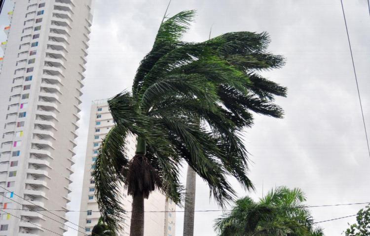 Sinaproc recomienda prevención ante incremento de vientos