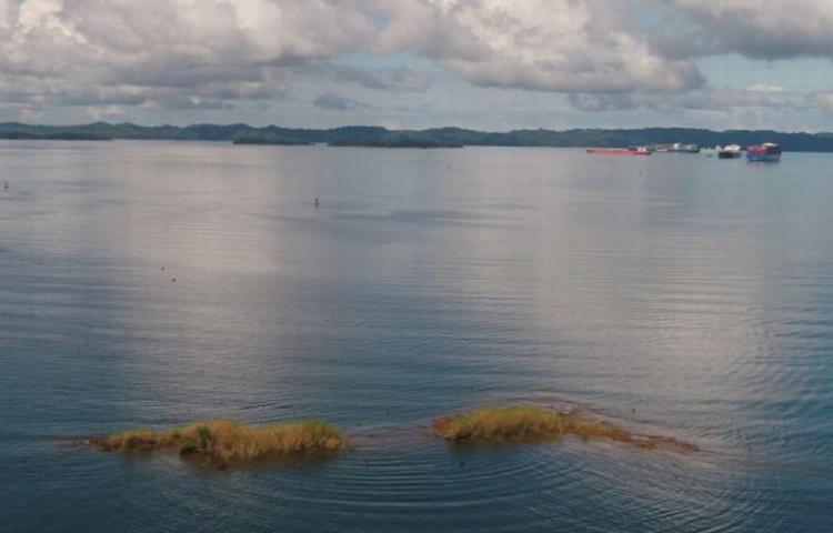 El quinto año más seco, según registro de lluvias de la cuenca del Canal, fue el 2019