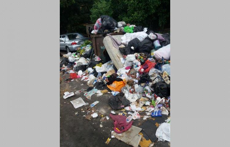 Viven rodeados de basura en San Miguelito