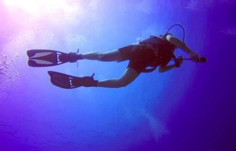 Organismos de rescate buscan a buzo de pesca que no volvió a la superficie