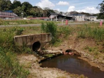 Mujer hallada muerta en Veracruz era una menor de 15 años
