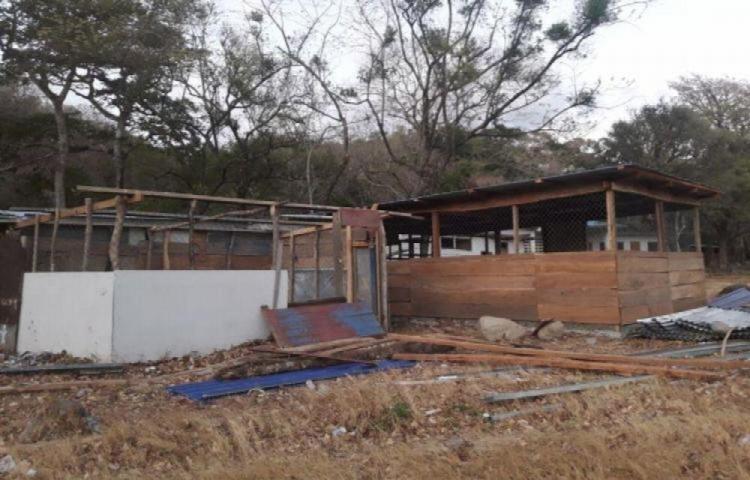 Con $50 millones buscan acabar con 800 'escuelas rancho'