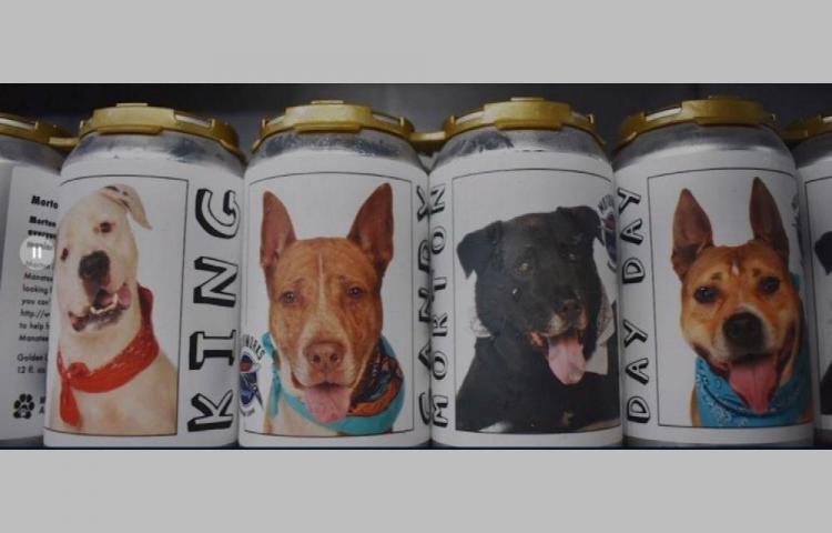 Halló a su perro por fotos en latas de cerveza
