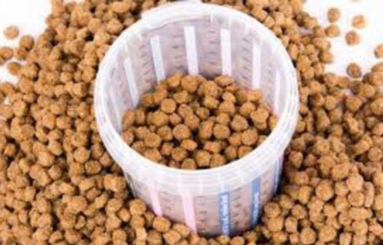 Se alimentó 30 días con granos para perros