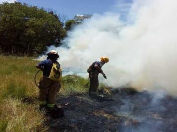Aumentan los incendios de masa vegetal en carnavales