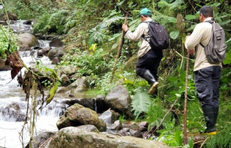 Realizan patrullajes en áreas protegidas de Chiriquí