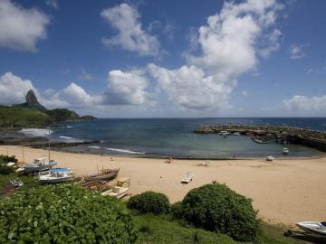 Advierten que el regreso de cruceros a islas en Brasil causará daños ambientales