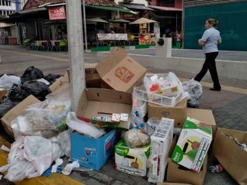 Cochinos tiran desperdicios en cualquier esquina