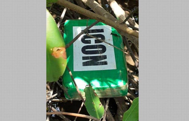 Hallan varios paquetes de droga en Guna Yala