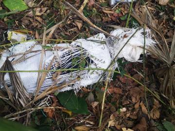 Avioneta clandestina se estrella con un tripulante a bordo en Guatemala