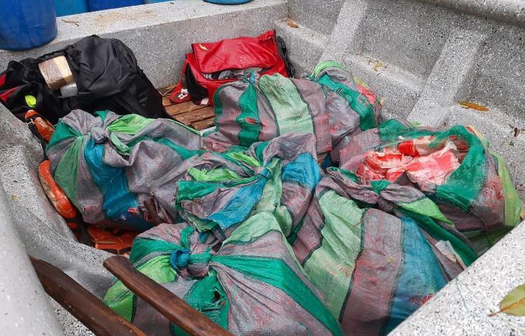 Incautan presunta droga Panamá Oeste