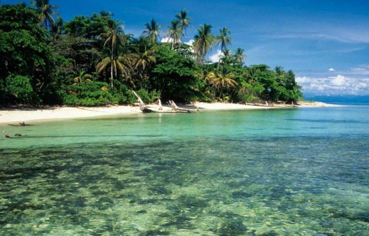 ATP propone protocolo para activar el turismo