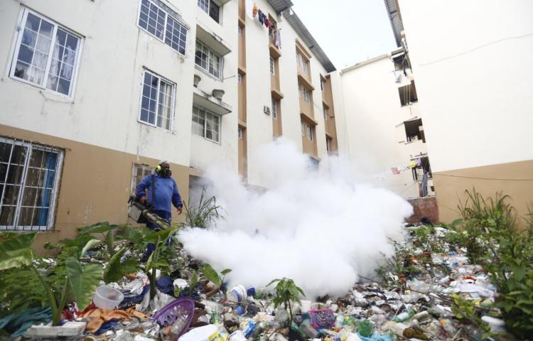 Jornada de fumigación y limpieza de herbazales en San Joaquín