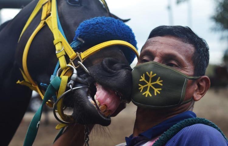 Con mascarillas retoman los entrenamientos en el Hipódromo Presidente Remón