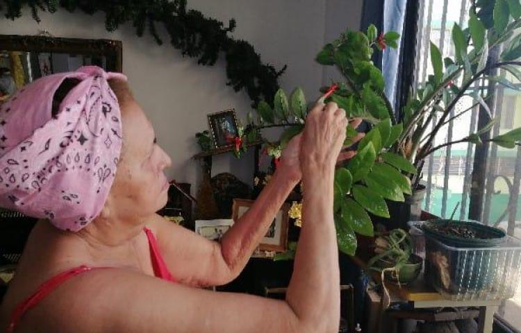 Juego de memoria y tecnología para los abuelos