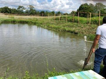 Panamá busca ser certificada por organismo pesquero de la Unión Europea