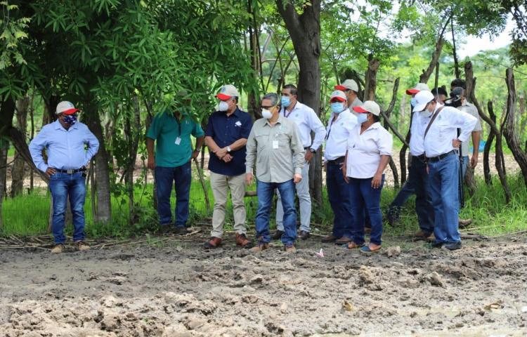 Productores reciben préstamos por medio millón del Plan Panamá Agro Solidario