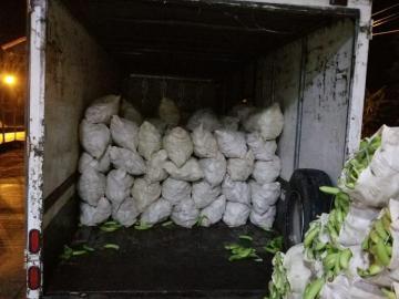 Aduanas retiene mascarillas y otros artículos en Chiriquí