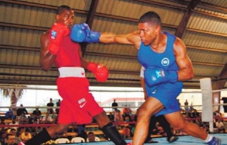 La pandemia colocó al borde del nocaut al boxeo dominicano