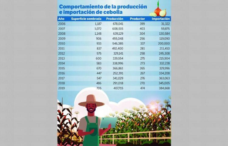 Producción de cebollas, 14 años en caída libre