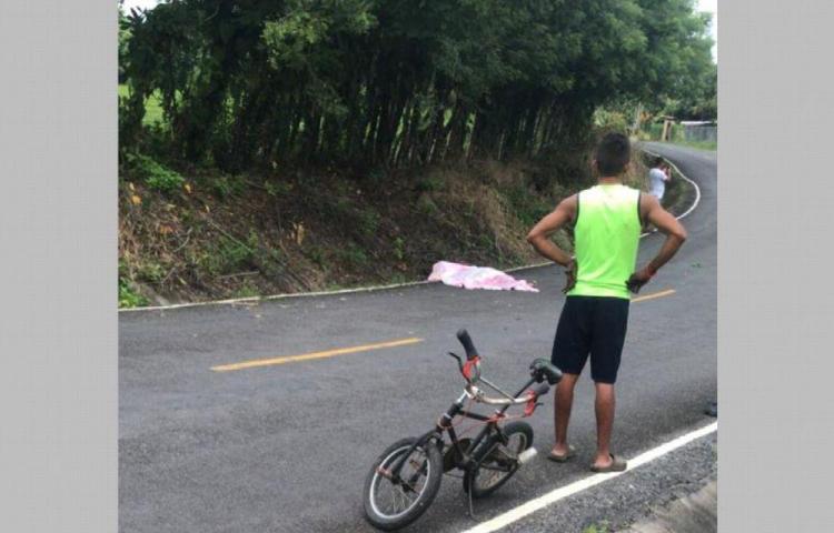Se quedó dormido en la carretera y lo arrollaron