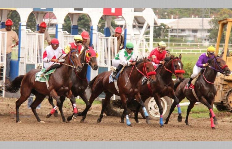 Se dieron tres carreras en el Hipódromo Presidente Remón