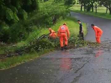Lluvias causaninundaciones, caídas de árboles y voladuras de techos