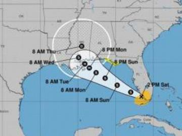 Sally se forma al sur de Florida y René se degrada