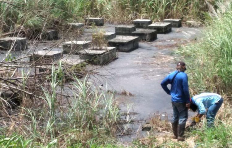 Laguna de aguas negras afecta a residentes de El Tecal