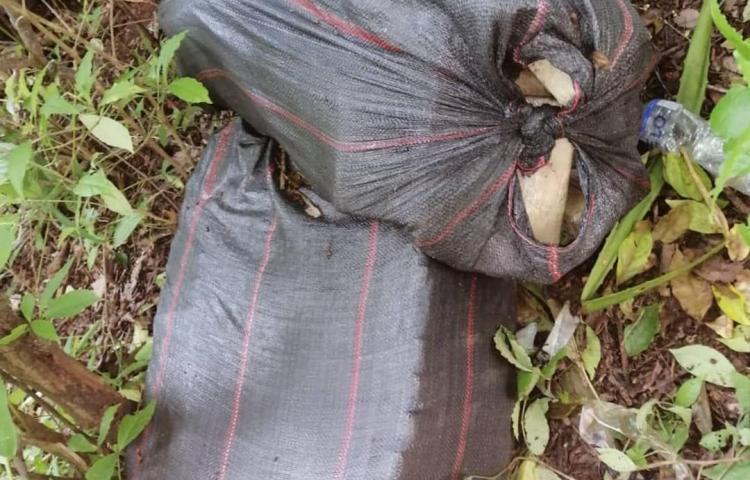 Incautan 111 paquetes de sustancias ilícitas en La Ensenada Isla del Rey