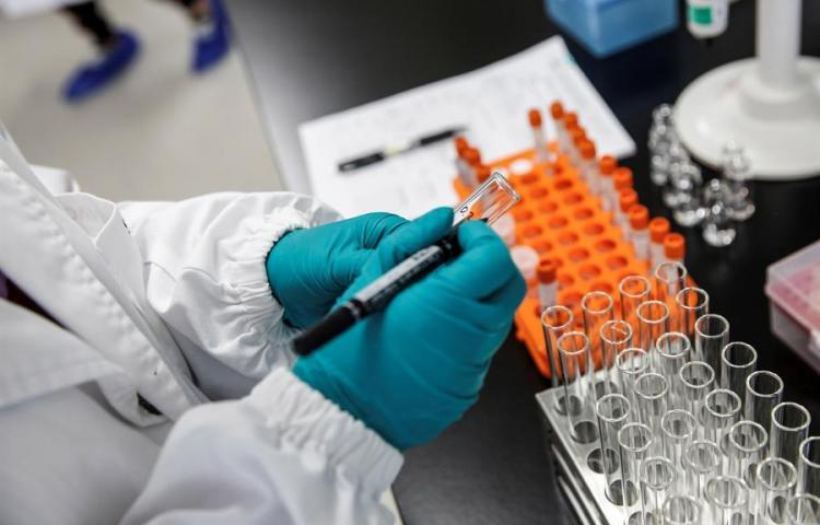 La china Sinovac prevé aplicar su vacuna masivamente a principios de 2021