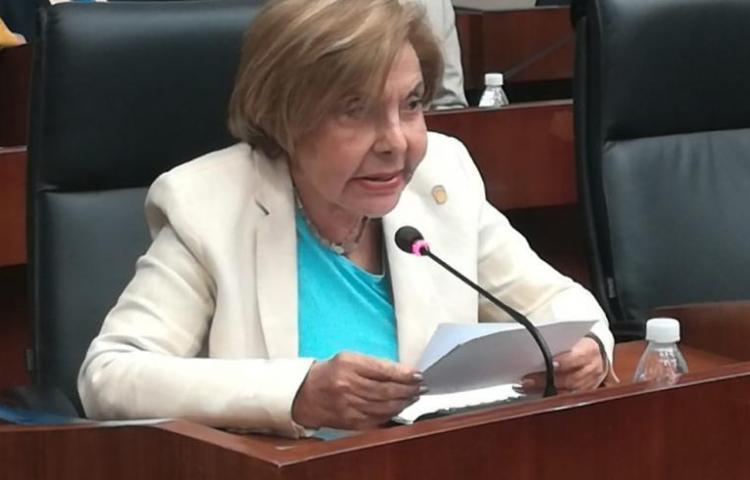"""Veto presidencial a proyecto, """"es político"""", dice Mayín"""