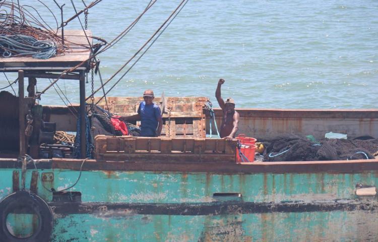 ARAP reactiva la pesca de camarón para dinamizar economía local