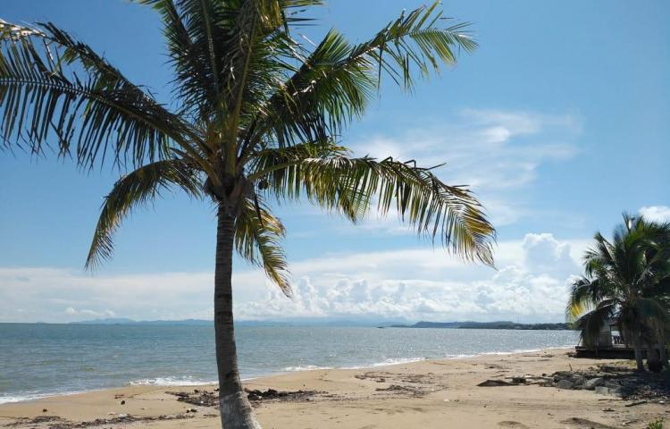 Se abrirán las playas, pero no se podrá llevar licor