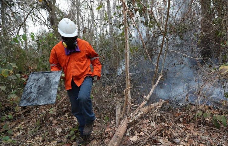 Los incendios en Bolivia no paran y arrasan con 1,5 millones de hectáreas