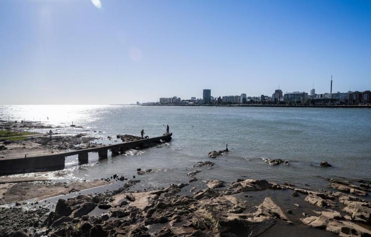 Países del Cono Sur debaten para unir esfuerzos en la protección marina