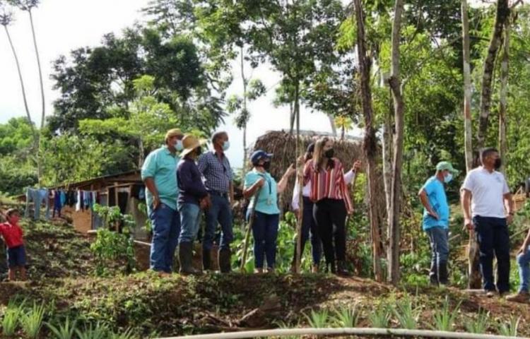 Plan Colmena avanza en el distrito de Capira