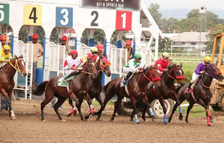 Las carreras regresan el 21 de enero