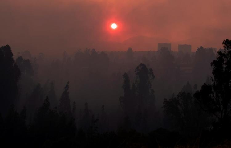 Un incendio forestal en el centro de Chile consume 2,630 hectáreas y siete viviendas