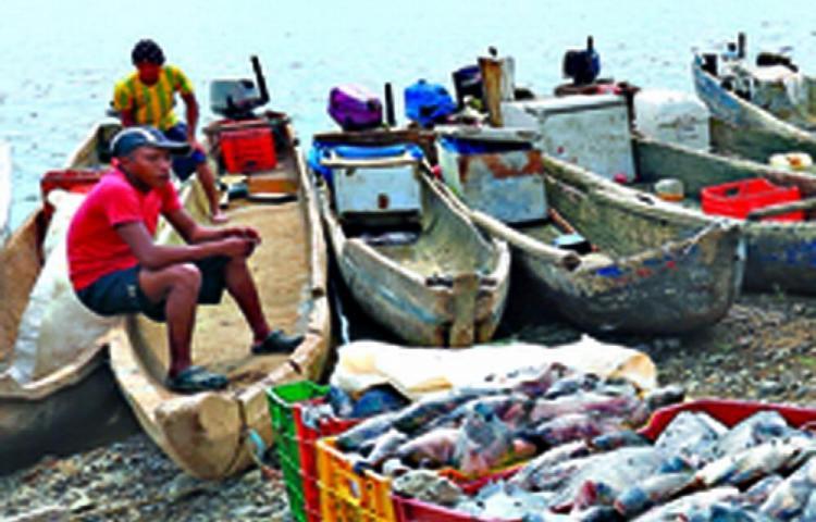 Arap asegura que nueva ley no afecta la pesca artesanal