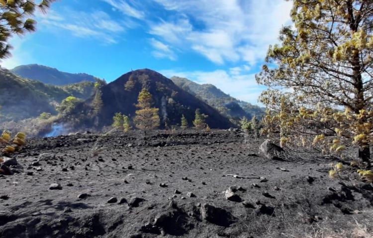 Incendio de masa vegetal en Tierras Altas ha consumido más de 140 hectáreas