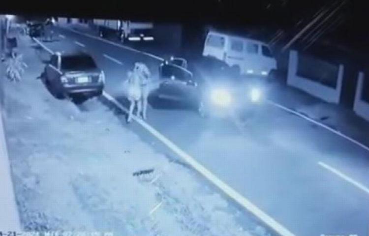 Pillos se detuvieron para robarle a una mujer