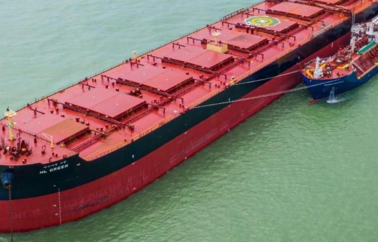 Autoridad Marítima de Panamá recaudó $81.5 millones en cinco meses