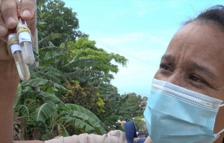 Minsa confirma 13 casos de dengue en región metropolitana